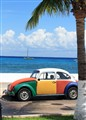 The Colours of Cozumel