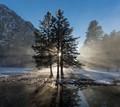 Yosemite Valley Trio