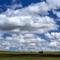Oregon_MorrowCo_WheatField_1XS_061516_3_2_1000px_reduced