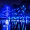 Winter Blues: Image taken at Longwood Gardens, Kennett Square PA during their seasonal Winter light show