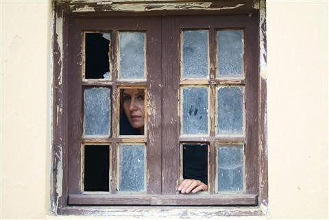 window_DSC9480