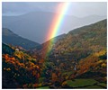 Autumn's rainbow
