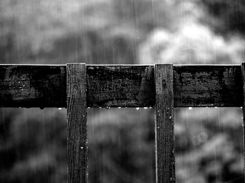 Railing in the Rain