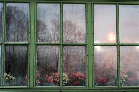 Vienna_garden_window-1