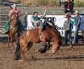 Rodeo at Cal Poly
