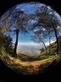 World's View