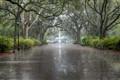 Forsyth Park Fountain, Savannah 2013