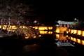 Anapi Pond Gyeongju N.P.