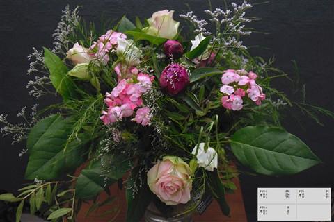 bloemdistagon-tst