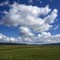 LoganValley_MalheurNFOR_1X_052315_1_1_900px_reduced