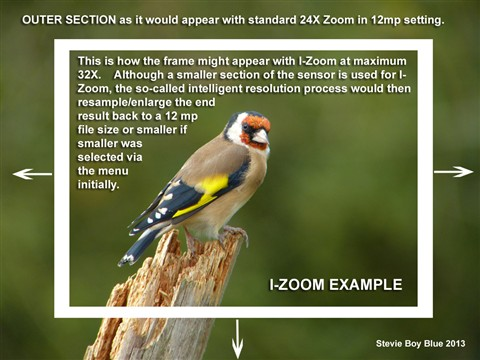 13 Intelligent (I) Zoom Example