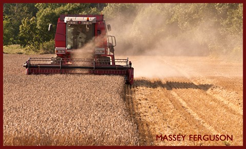 Massey Ferguson 1600