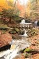 Glen Leigh Trail, Ricketts Glen State Park PA
