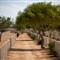 2008-11-El Alamein-037