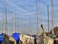 Erie Yacht Club