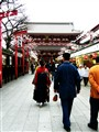 Serene Japan