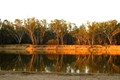 The Murray River at Sunset