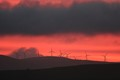 Quixotic Sunrise