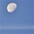 Moon Trail