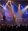 Concert NL