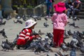 Two girls are feeding the pigeons on Plaza de Armas, La Paz, Bolivia