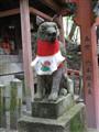Japan fox ....