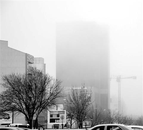 Morinig Fog
