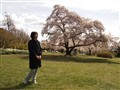 at QE Park