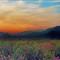 Sunset imagination