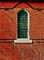 Window in Brick With Ghost Vines