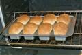 Mini Loafs
