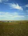 Marcel on the Colorado Prairie