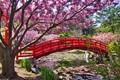 Takayamainari Shrine Garden