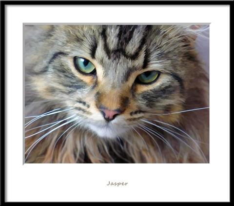120501_Jasper