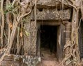The entrance to Ta Phrom!!! Where does it go and what secrets are within?