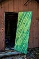 green door (1 of 1)