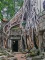 Ankor Wat - Ta Prom