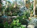 Royal Botanic Gardens. Kew. Surrey. England
