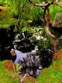 The secret Japanese garden