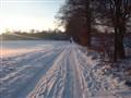 Winterwalk in the Wedemark