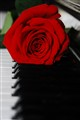 Flowery Music