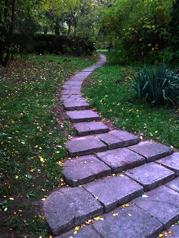 The path to nature