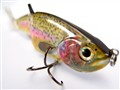 Rainbow Trout Lure