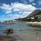 penguins-at-boulders-beach-9