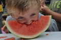 The watermelon eating contest is always a hit at the Summer Regatta.