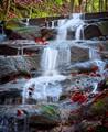 Waterfall in SC
