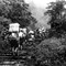 1981 To the summit of Emei