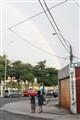 Arica Rainbow