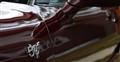 Corvette 50th