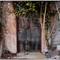 Casa-abandonada-en-Lagos-X1001237